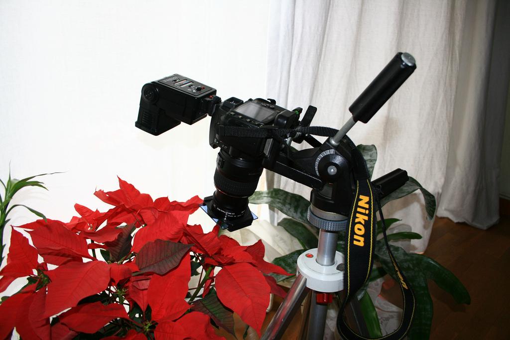 Filtros con la Nikon D40