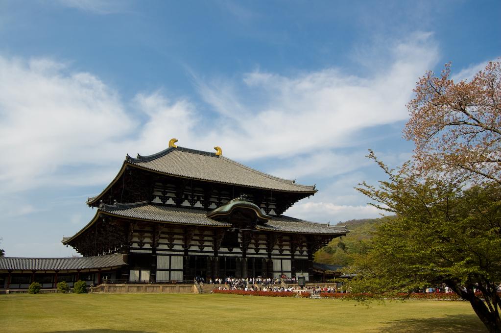 La Nara que yo vi