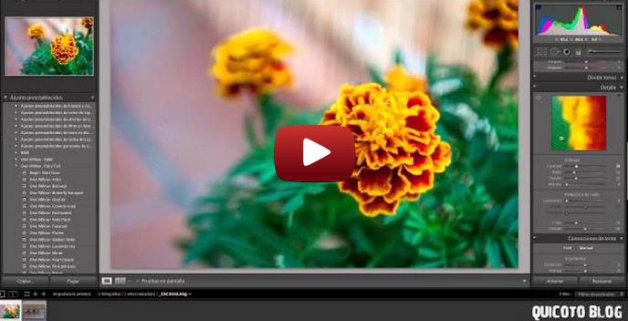 VideoCurso Adobe Lightroom 4: Editando nuestras Fotografías