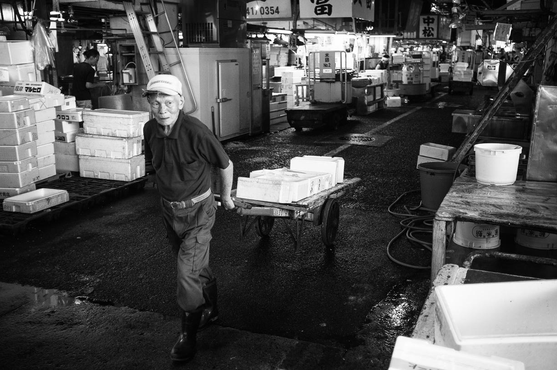 Tsukiji, el Mercado del Pescado de Tokyo – 2014