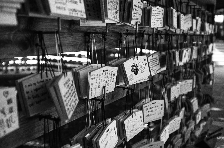 Desde Tokyo hasta Kyoto, Japón