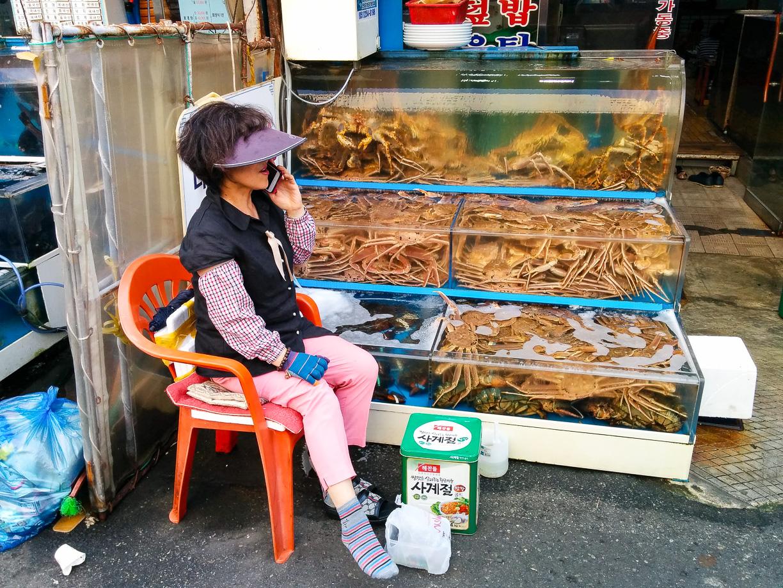Mercado de pescado al aire libre en Busan, Corea del Sur