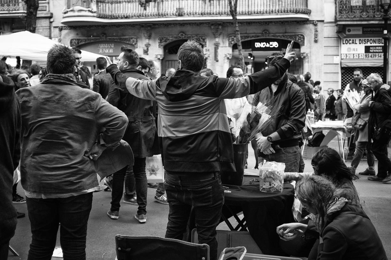 Sant Jordi 2016 Barcelona-4