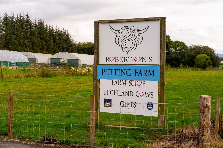Las vacas de las tierras altas – Viaje a Escocia